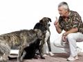 Kommunikation Mensch Hund