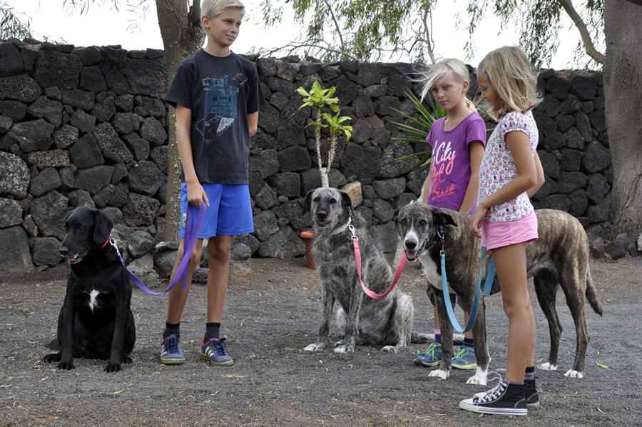 Kinder & Hunde
