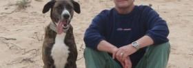 Hunde Verhaltenstherapeut